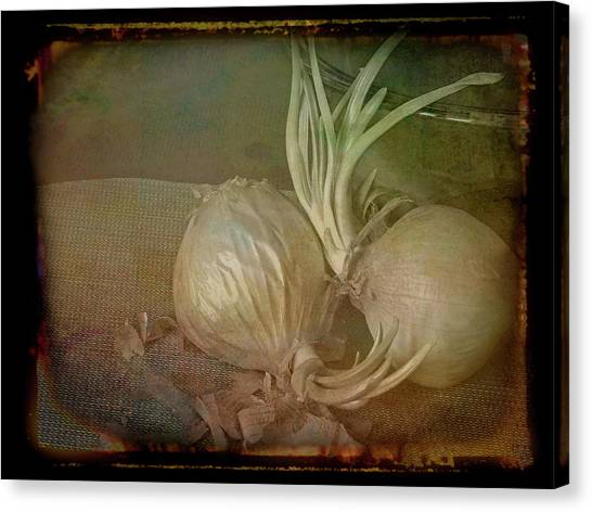 Canvas Print featuring the mixed media Vintage Onions 3 by Lynda Lehmann