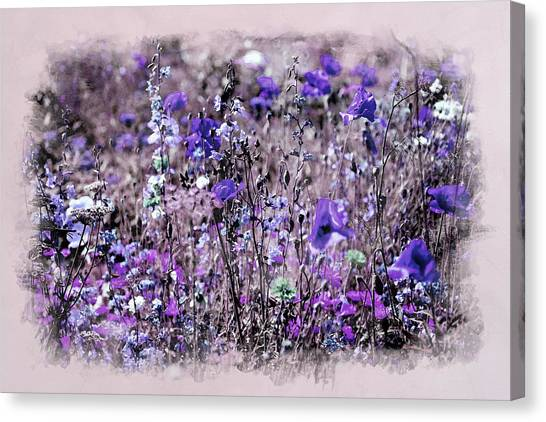 Violet Mood Canvas Print