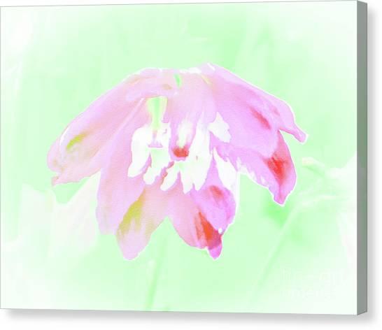 Violet Red Islamic Flora Canvas Print