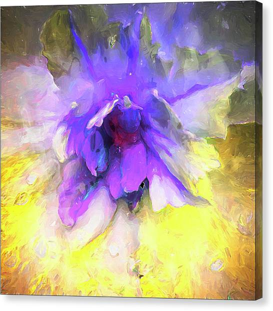 Violetta Limon Canvas Print