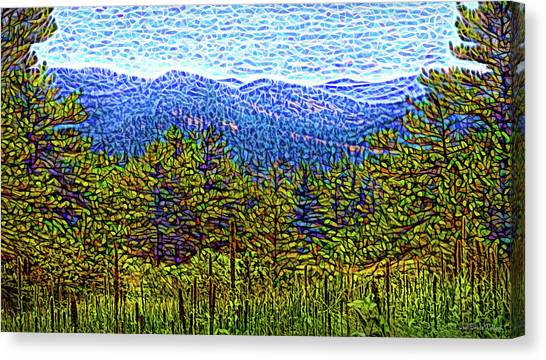 Canvas Print featuring the digital art Visionary Vista by Joel Bruce Wallach