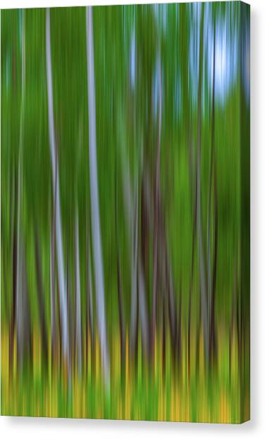 Visions Of Summer Canvas Print
