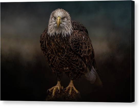 Waiting On The Storm Canvas Print