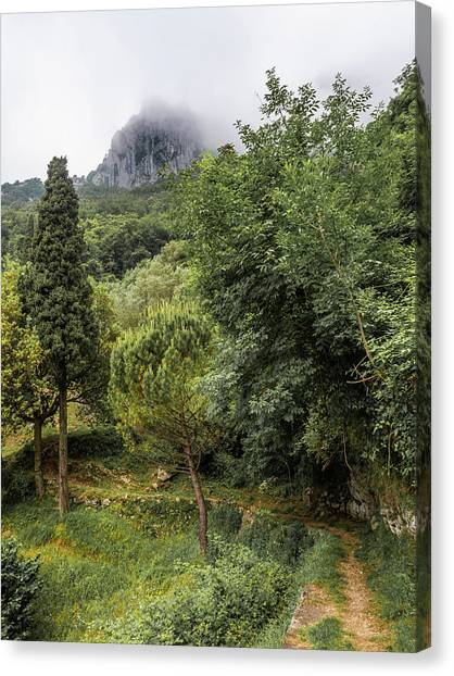 Walking Along The Mountain Path Canvas Print