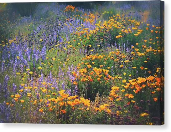Canvas Print - Walking Amongst The Wildflowers  by Saija Lehtonen