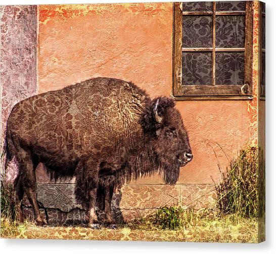 Wallpaper Bison Canvas Print