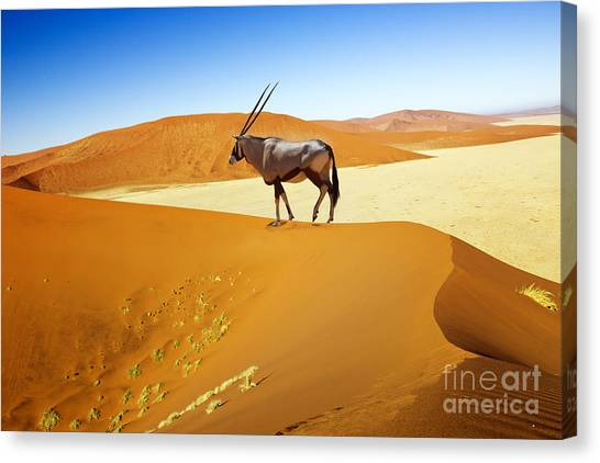 Bush Canvas Print - Wandering Dune Of Sossuvlei In Namibia by Mezzotint