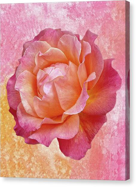 Warm And Crunchy Rose Canvas Print
