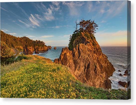 Warm And Peaceful Coast Canvas Print by Leland D Howard