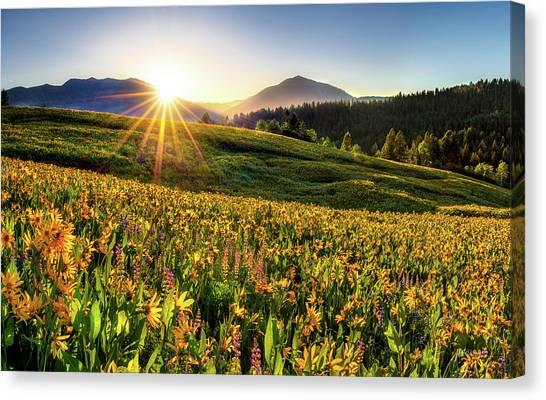 Warm Spring Sunrise 2 Canvas Print by Leland D Howard
