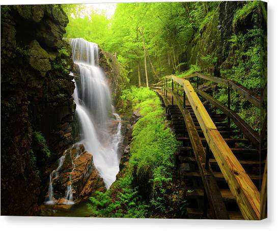 Water Falls In The Flume Canvas Print by Noppawat Tom Charoensinphon