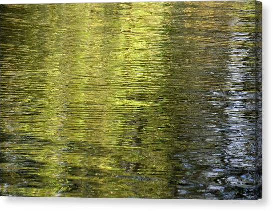 Water Reflection_521_17 Canvas Print