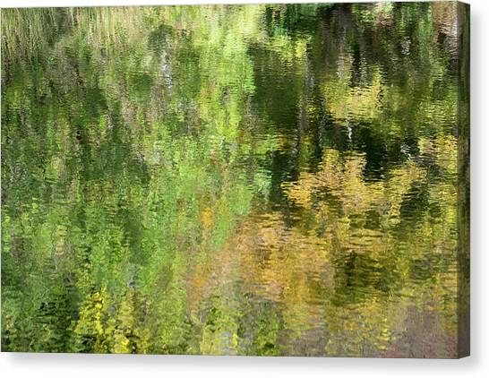 Water Reflection_598_17 Canvas Print