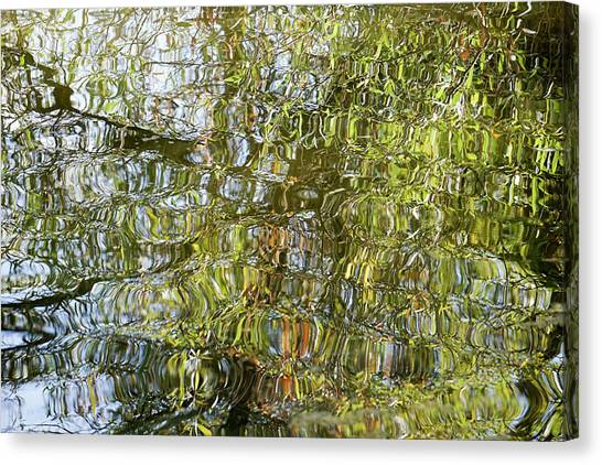 Water Reflection_65_17 Canvas Print