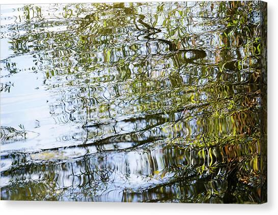 Water Reflection_74_17 Canvas Print