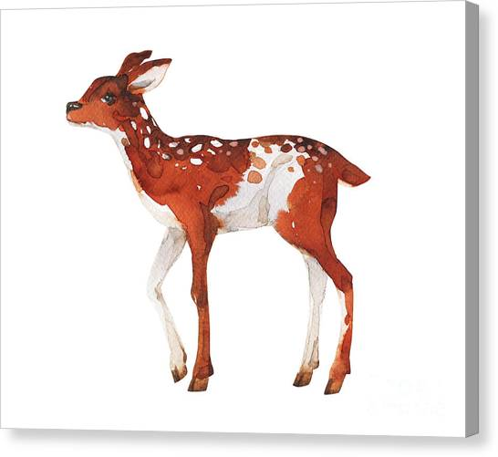 Woodland Canvas Print - Watercolor Dotted Fawn Painting. Hand by Kat branches