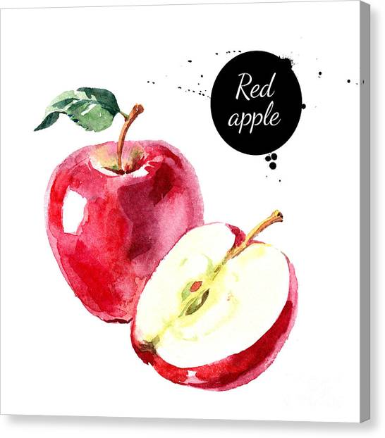 Watercolor Hand Drawn Red Apple Canvas Print by Pimlena