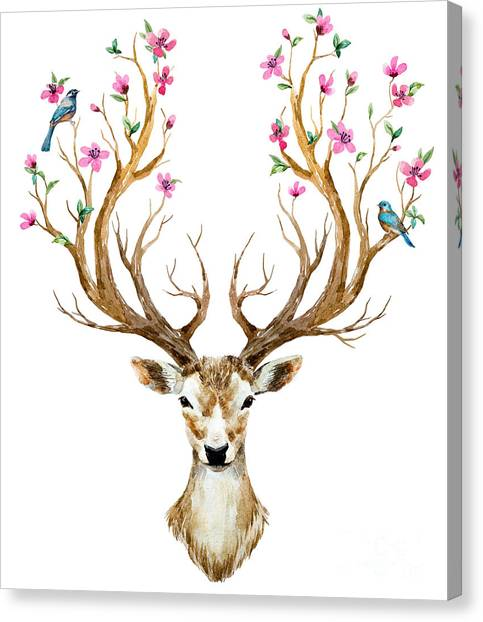 Elk Canvas Print - Watercolor Illustration Isolated Deer by Anastasia Lembrik