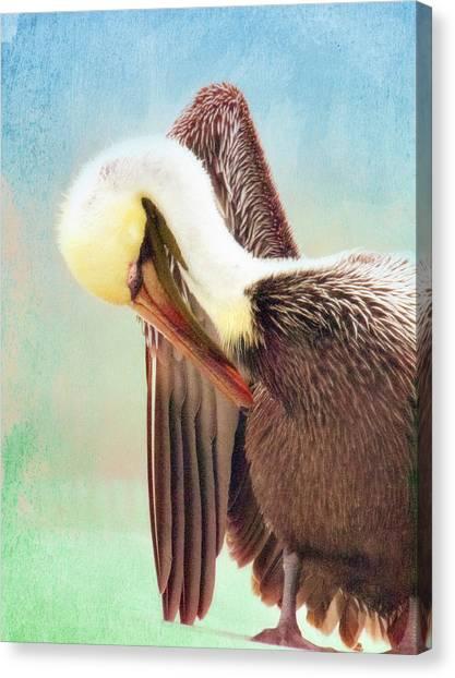 Watercolor Pelican Canvas Print