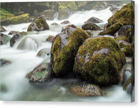 Waterfall, Bc, Canada Canvas Print by Paul Souders