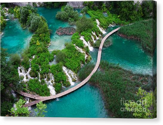 Bush Canvas Print - Waterfalls In Plitvice National Park by Evgeniya Moroz