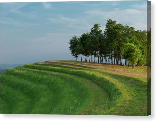 Canvas Print featuring the photograph Waves Of Grass by Davor Zerjav