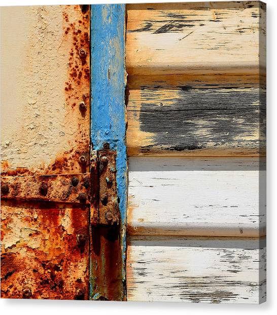 Weathered Canvas Print by Sabina D'Antonio