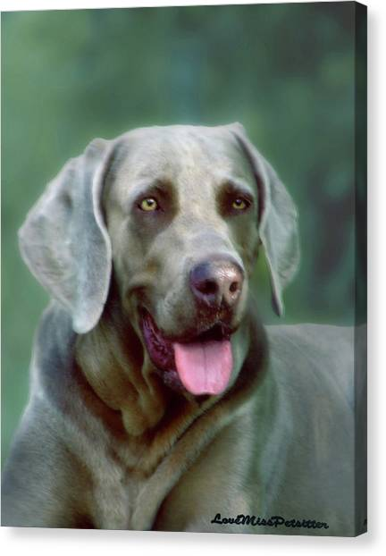 Weimaraner Art My Space Canvas Print