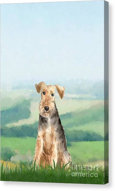 Purebred Canvas Print - Welsh Terrier by John Edwards