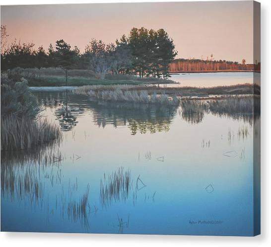 Wetland Reverie Canvas Print