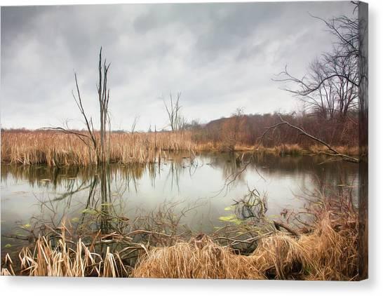 Marsh Grass Canvas Print - Wetlands On A Dreary Day by Tom Mc Nemar
