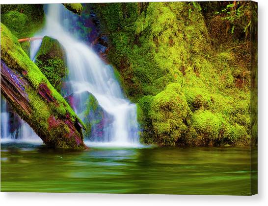 White Cascade Into The Salmon River Canvas Print