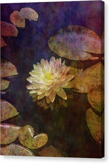 White Lotus Lily Pond 2938 Idp_2 Canvas Print