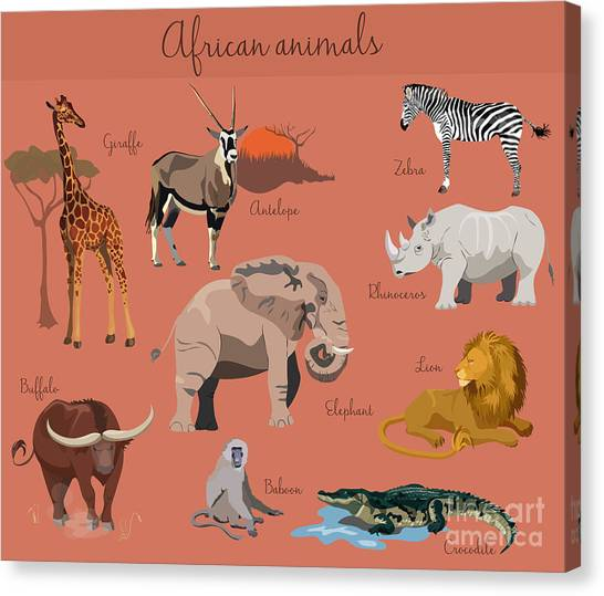 Zoology Canvas Print - Wild African Animals Set With Nature by Lemberg Vector Studio