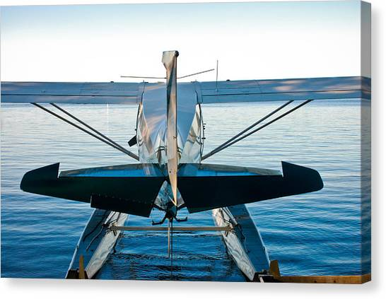 Canvas Print featuring the photograph Wild Blue by Carl Young