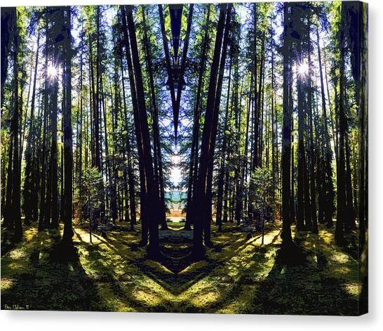 Wild Forest #1 Canvas Print
