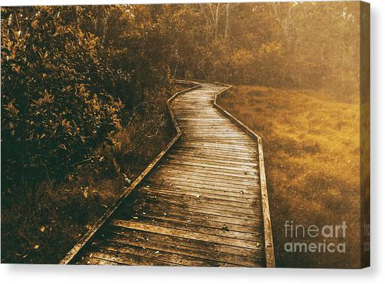 Moorland Canvas Print - Wild Routes by Jorgo Photography - Wall Art Gallery