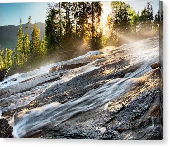 Wilderness River Canvas Print by Leland D Howard