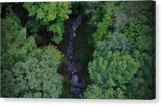 Willow Run Creek Canvas Print