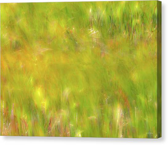 Wind Painting 4 Canvas Print by Leland D Howard