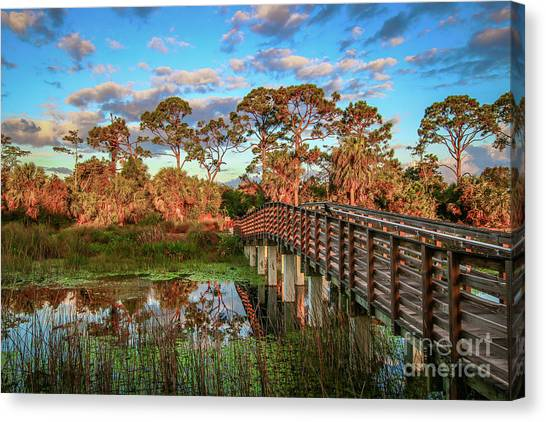 Canvas Print featuring the photograph Winding Waters Boardwalk by Tom Claud