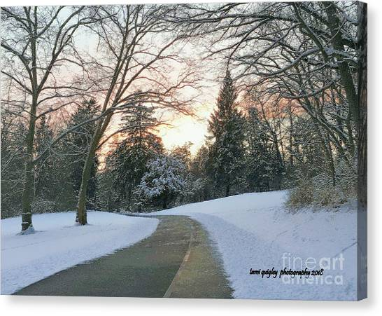Little Things Canvas Print - Winding Wintry Sunset  by Tami Quigley