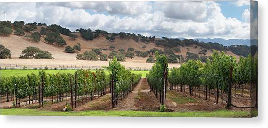 Sonoma Valley Canvas Print - Wine Country Scenic by S. Greg Panosian