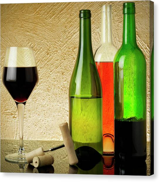 Wine Testing Canvas Print