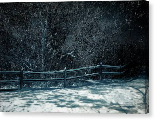 Winter Arrived Canvas Print