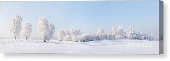 Hoarfrost Canvas Print - Winter Beautiful Landscape With Trees by Alex po