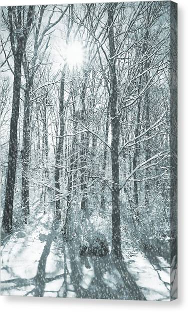 Winter Cold Canvas Print by JAMART Photography