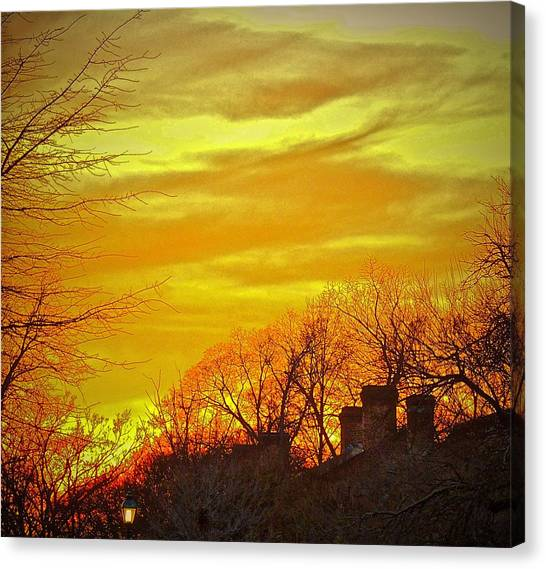 Canvas Print featuring the photograph Winter Gold by Don Moore