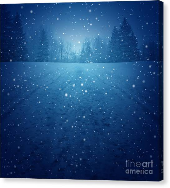 Pine Trees Canvas Print - Winter Landscape Concept As A Snowing by Lightspring