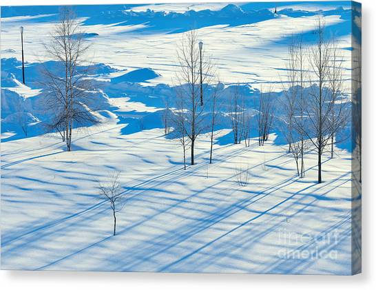 Hoarfrost Canvas Print - Winter Landscape. Sunset In The Winter by Leonid Ikan